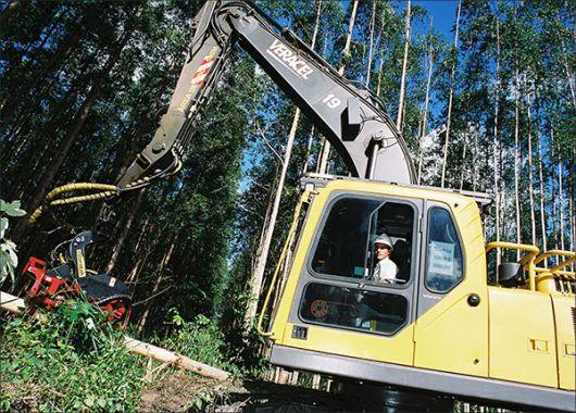 Veracel Celulose divulga edital para contratação de monitor de planejamento florestal.