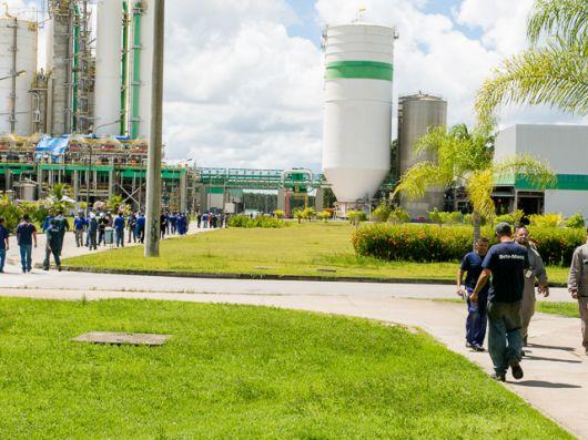 Veracel Celulose divulga edital para contratação de Analista de Operações Florestais Jr.